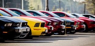 VII Zlot Mustangów Toruń 2015 – relacja Stang232